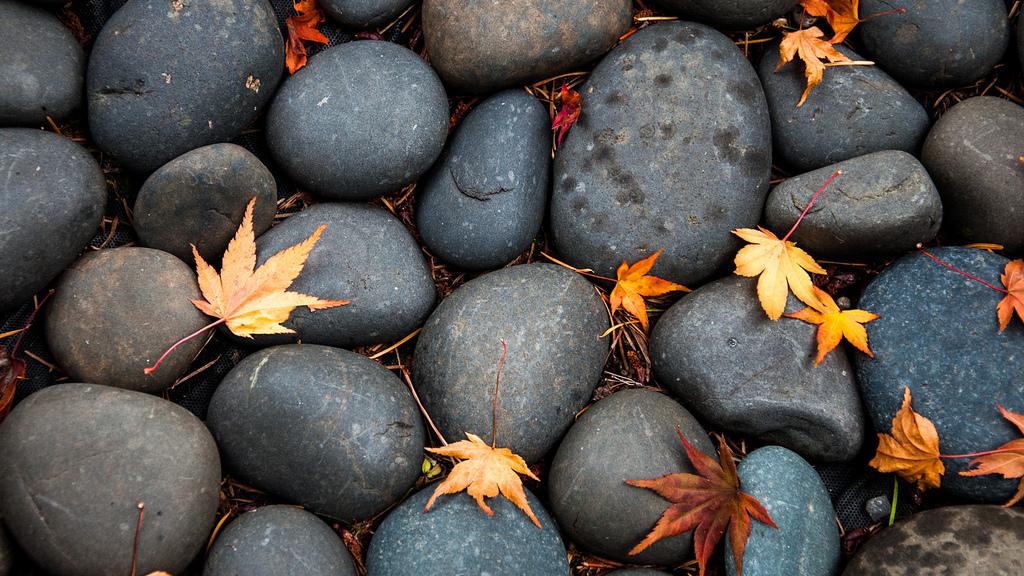 Laboratorio per un'esperienza di Mindfulness