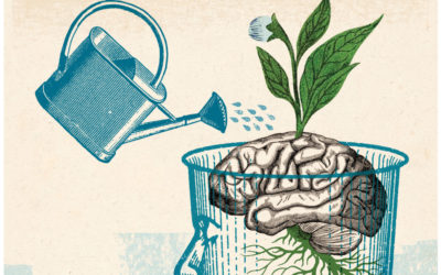 Perché pratichiamo la Mindfulness al Centro Libenter?