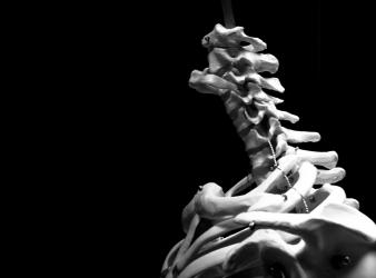 Fisioterapia: cura integrata per il corpo e per la mente